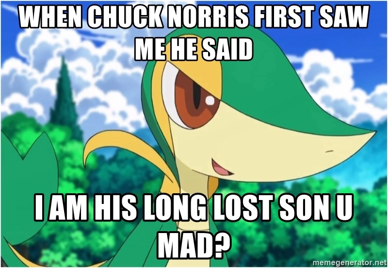 Snivy - When Chuck Norris First saw me he said i am his long lost son u mad?