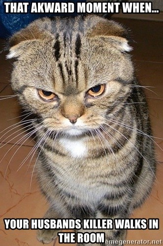 angry cat 2 - That akward moment when... your husbands killer walks in the room