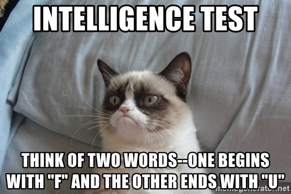 "Grumpy cat 5 - Intelligence test Think of two words--one begins with ""f"" and the other ends with ""u"""