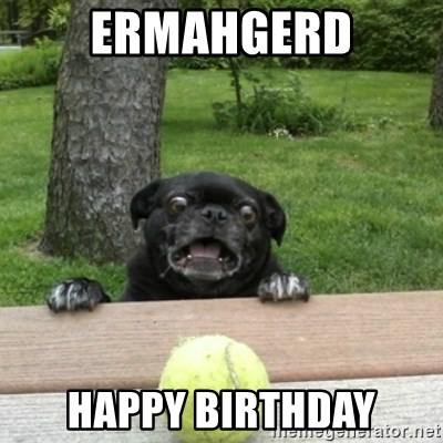 Ermahgerd Pug - ERMAHGERD HAPPY BIRTHDAY