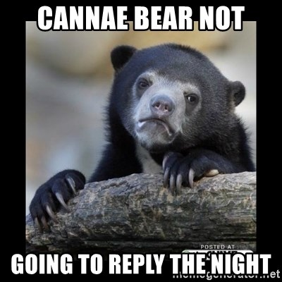 sad bear - Cannae Bear not going to reply the night