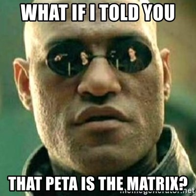what if i told you matri - What if I told you that peta is the matrix?