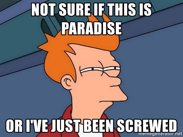 Futurama Fry - Not sure if this is paradise Or i've just been screwed