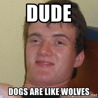 Stoner Stanley - Dude Dogs are like wolves