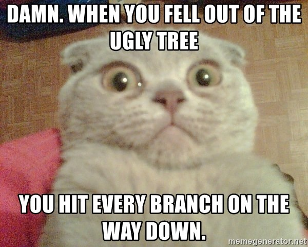 GEEZUS cat - DAMN. WHEN YOU FELL OUT OF THE UGLY TREE YOU HIT EVERY BRANCH ON THE WAY DOWN.