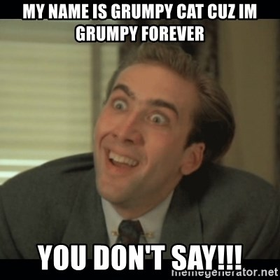 Nick Cage - my name is grumpy cat cuz im grumpy forever you don't say!!!