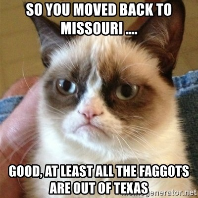 Grumpy Cat  - So you moved back to Missouri .... Good, at least all the FaggoTs are Out of Texas