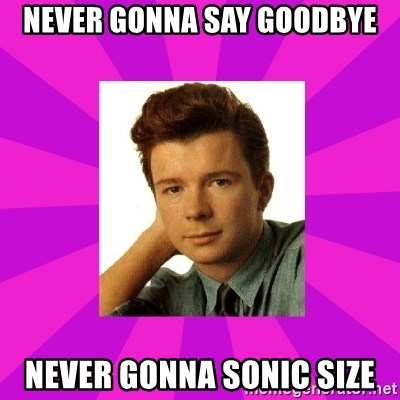 RIck Astley - Never gonna say gOodBye Never gonna SOnic size