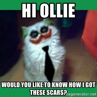 It's simple, we kill the Batman. - Hi Ollie Would you like to know how I got these scars?