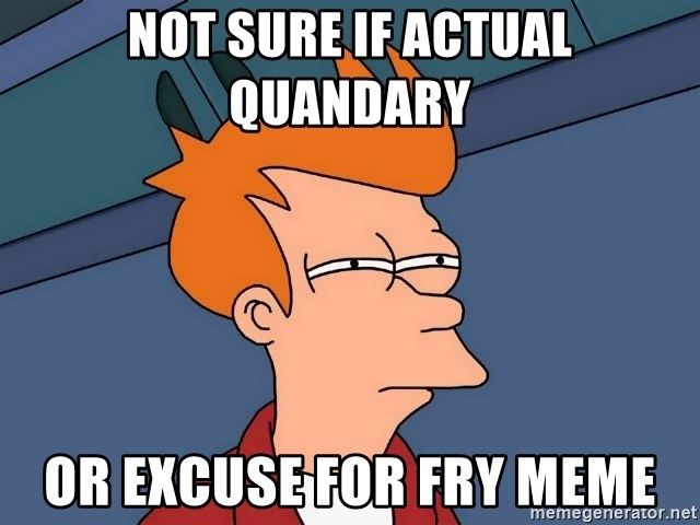Futurama Fry - Not Sure if Actual Quandary Or excuse for fry meme