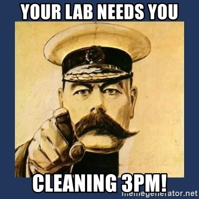 your country needs you - Your lab needs you cleaning 3pm!
