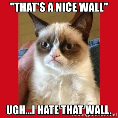 "No cat - ""That's a nice wall"" Ugh...I hate that wall."