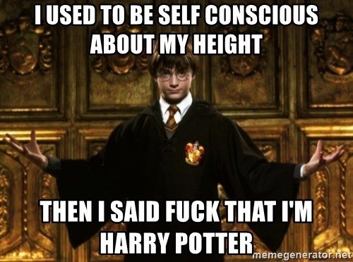 Harry Potter Come At Me Bro - I USED TO BE SELF CONSCIOUS ABOUT MY HEIGHT THEN I SAID FUCK THAT I'M HARRY POTTER