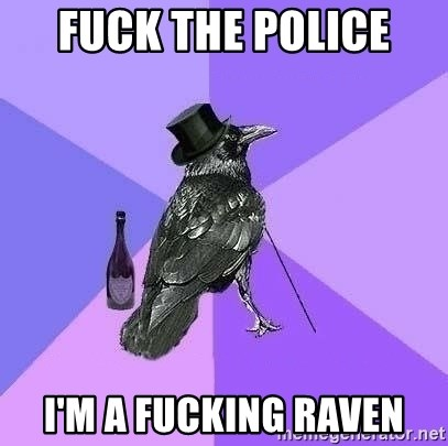 Rich Raven - Fuck the police  I'm a fucking raven
