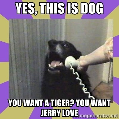 Yes, this is dog! - YES, THIS IS DOG yOU WANT A TIGER? yOU WANT JERRY LOVE