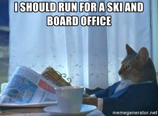Sophisticated Cat - I should run for a ski and board office