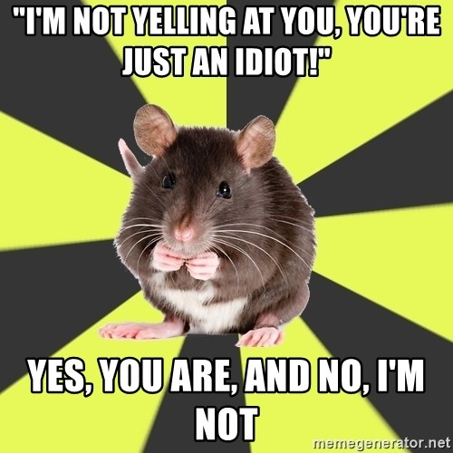 """Survivor Rat - """"I'm not yelling at you, you're just an idiot!"""" Yes, you are, and no, I'm not"""