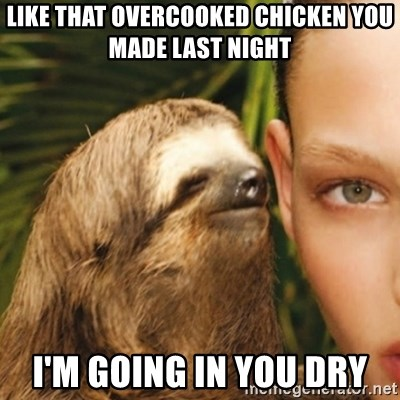 Whisper Sloth - like that overcooked chicken you made last night i'm going in you dry