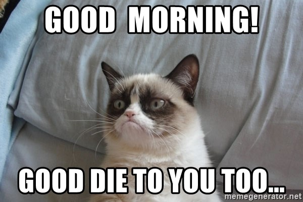 moody cat - Good  Morning! good die to you too...