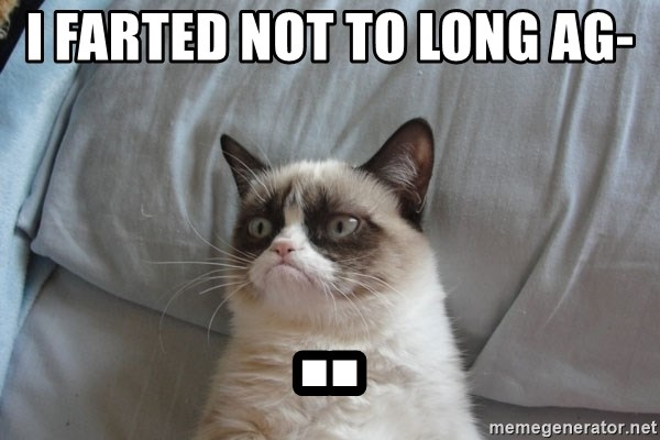 Grumpy cat good - i FARTED NOT TO LONG AG- ..
