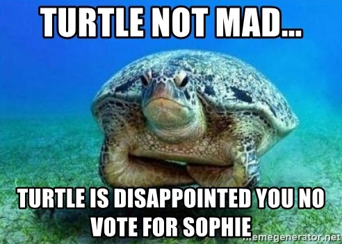 disappointed turtle - turtle not mad... turtle is disappointed you no vote for sophie