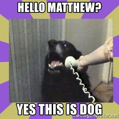 Yes, this is dog! - Hello matthew? yes this is dog