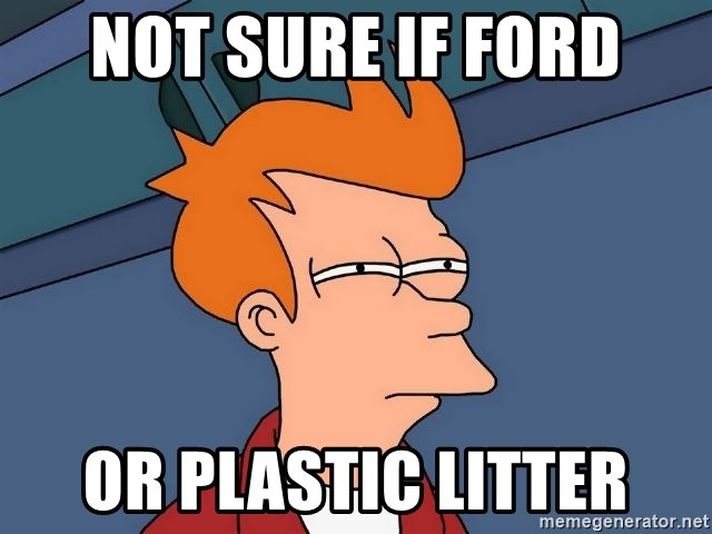 Futurama Fry - not sure if ford or plastic litter
