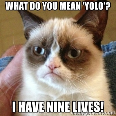 Grumpy Cat  - WHAT DO YOU MEAN 'YOLO'? I HAVE NINE LIVES!