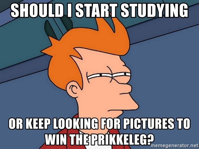 Futurama Fry - Should i start studying Or keep looking for pictures to win the prikkeleg?