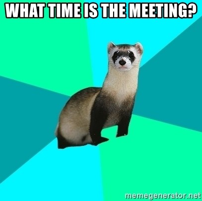 Obvious Question Ferret - What time is the meeting?