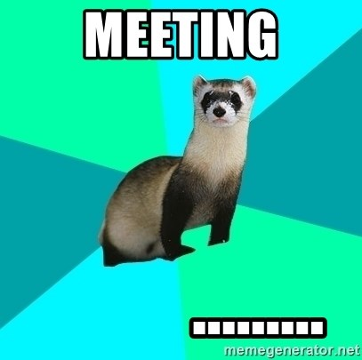 Obvious Question Ferret - MEETING            .........
