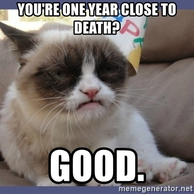 Birthday Grumpy Cat - you're one year close to death? Good.