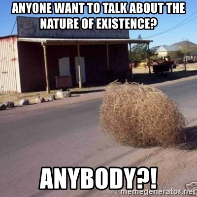 Tumbleweed - anyone want to talk about the nature of existence? anybody?!
