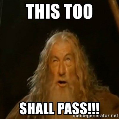 Gandalf You Shall Not Pass - THIS TOO SHALL PASS!!!