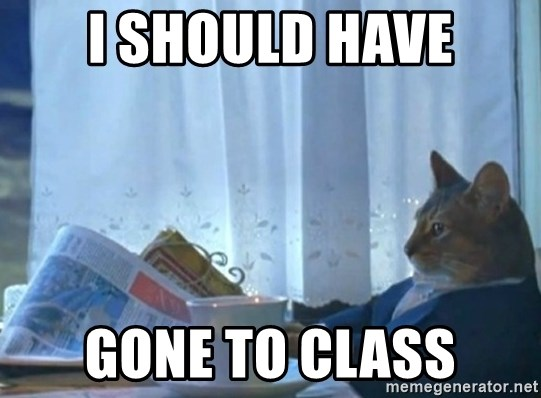 Sophisticated Cat - I should have gone to class