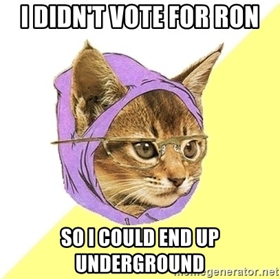 Hipster Kitty - I didn't vote for ron so i could end up underground