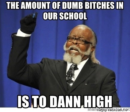 The tolerance is to damn high! - The amount of dUmb biTches in Our school Is to dann high