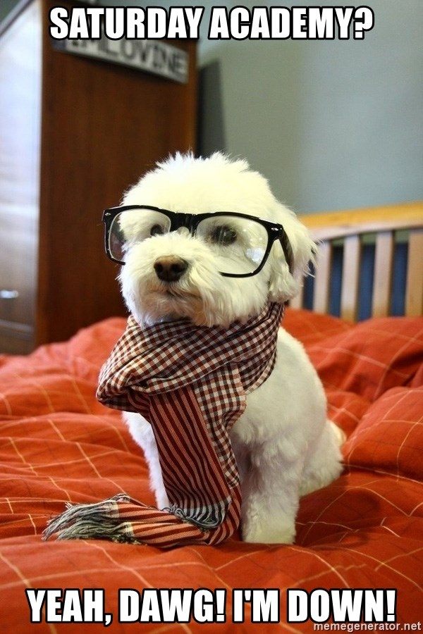 hipster dog - Saturday Academy? Yeah, dawg! I'm down!