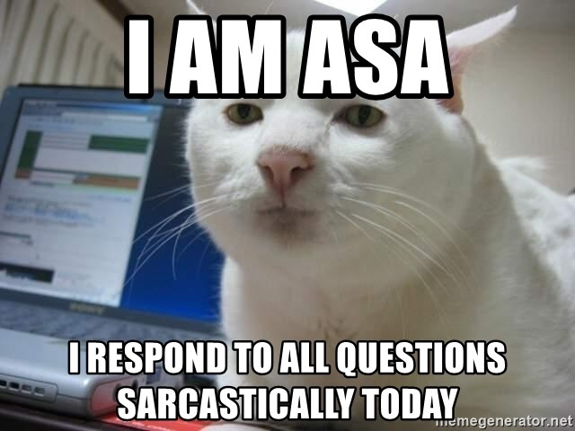 Serious Cat - I am Asa i respond to all questions sarcastically today