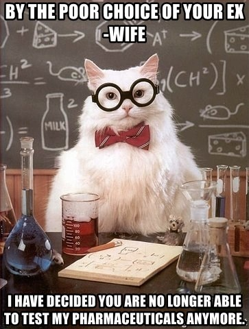 Chemistry Cat - BY THE POOR CHOICE OF YOUR EX-WIFE I HAVE DECIDED YOU ARE NO LONGER ABLE TO TEST MY PHARMACEUTICALS ANYMORE.