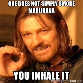 One Does Not Simply - One does not simply smoke marijuana You inhale it