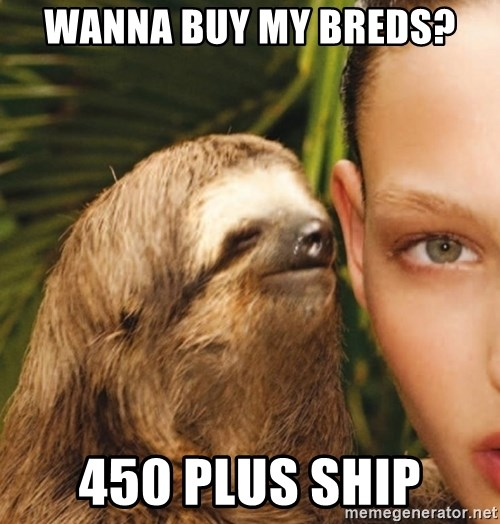 The Rape Sloth - Wanna buy my breds? 450 plus ship