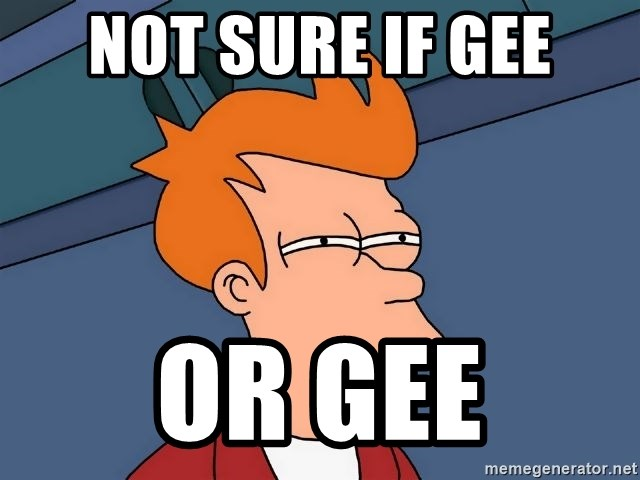 Futurama Fry - Not sure if gee or gee