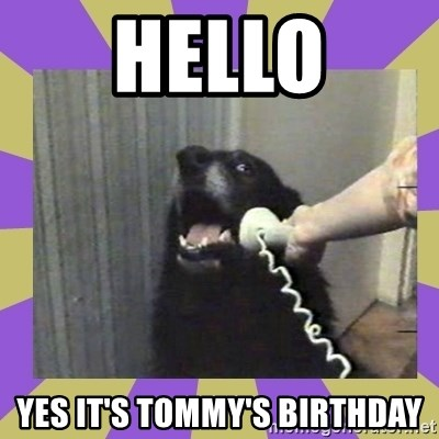 Yes, this is dog! - HELLO YES IT'S TOMMY'S BIRTHDAY