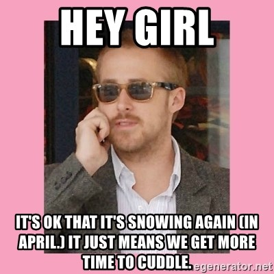 Hey Girl - hey girl it's ok that it's snowing again (in april.) It just means we get more time to cuddle.
