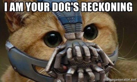 bane cat - I am your dog's reckoning