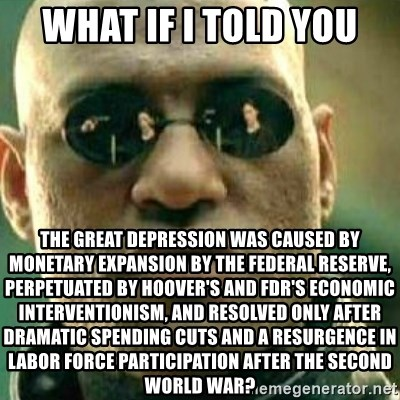 What If I Told You - what if i told you The great depression was caused by monetary expansion by the federal reserve, perpetuated by Hoover's and FDR's Economic interventionism, and resolved only after dramatic spending cuts and a resurgence in labor force participation after the second world war?