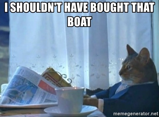 Sophisticated Cat - I shouldn't have bought that boat