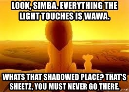 The Lion King - Look, Simba. Everything the light touches is wawa.  Whats that shadowed pLace? That's sheetz, you must never go there.