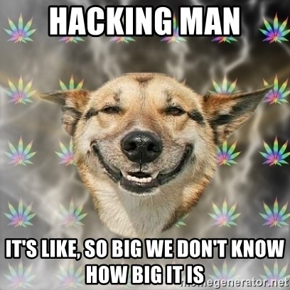 Stoner Dog - Hacking man  it's like, so big we don't know how big it is